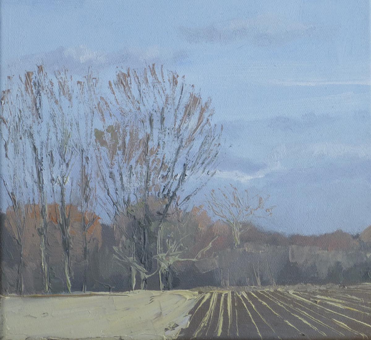 Landschapsschilder Anne Jitske Salverda